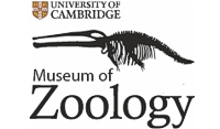 Cambridge University Museum of Zoology