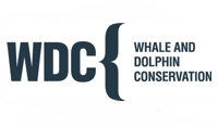 Whale-and-Dolphin-Conservation