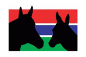 Gambia-Horse-and Donkey-Trust