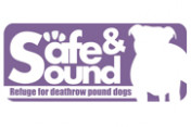 Safe-and-Sound-Pound-Dogs