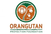 Orangutan-Protection-Foundation