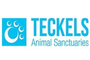 Teckels-Animal-Sanctuaries