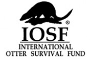 International-Otter-Survival-Fund