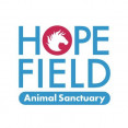Hopefield Animal Sancturary