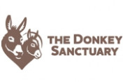 The-Donkey-Sanctuary