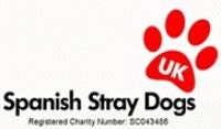 Spanish-Stray-Dogs-UK