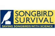 SongBird-Survival